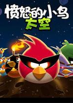 愤怒的小鸟太空版pc破解中文版