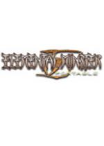 元素怪兽TD携带版PSP中文汉化版