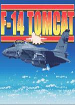 F-14雄猫