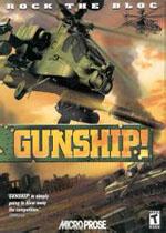 长弓阿帕奇杀戮战场(Gunship)硬盘版