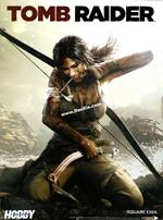 古墓丽影9(Tomb Raider)PC中文破解版
