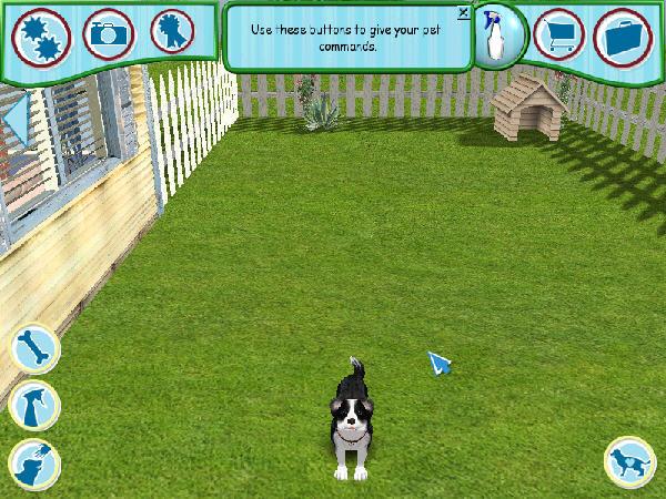 模拟宠物狗6截图0