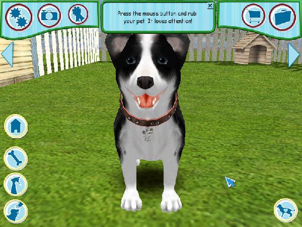 模拟宠物狗6截图1