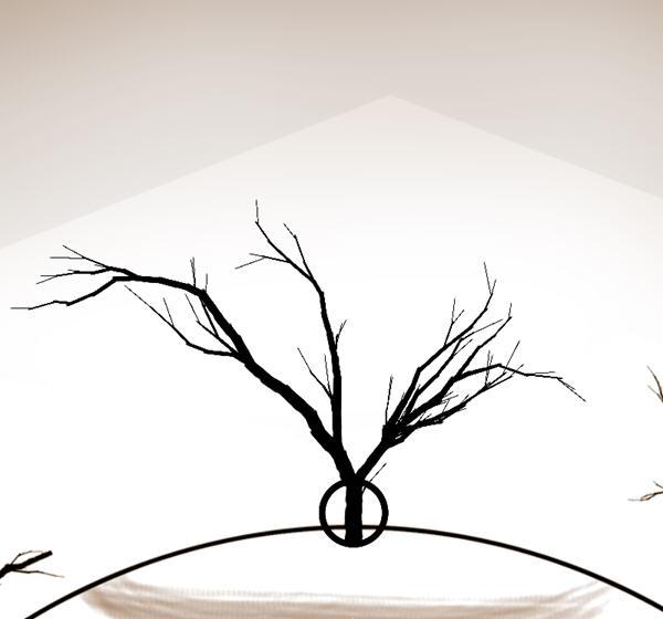 树枝藤蔓边框简笔画