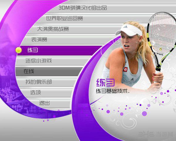 虚拟网球4