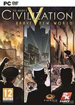 文明5美丽新世界