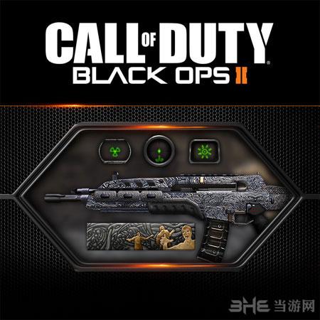 使命召唤9黑色行动2最新自定义升级包迷彩枪图片3