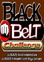 黑腰带挑战赛