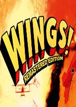 翱翔机翼:重制版