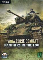 近距离作战:雾中黑豹