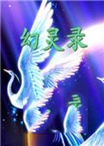 幻灵录中文破解版V1.02