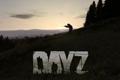 DayZ��立版