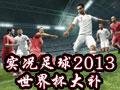实况足球2013 Rizki Patch世界杯大补