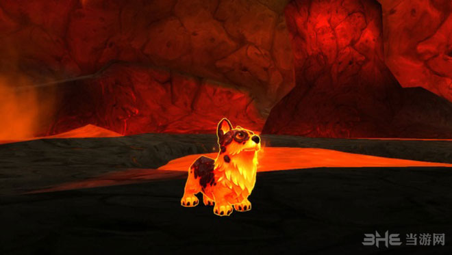 魔兽世界周年庆柯基犬宠物