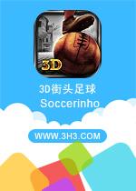 3D街头足球电脑版