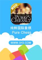 纯粹国际象棋电脑版