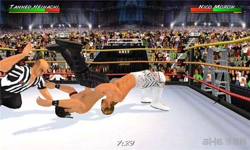 摔跤革命3D电脑版截图0