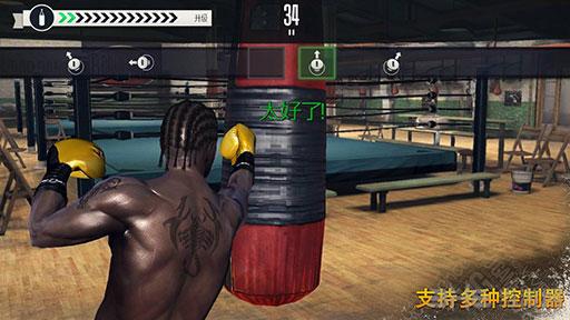真实拳击无限金币版截图0