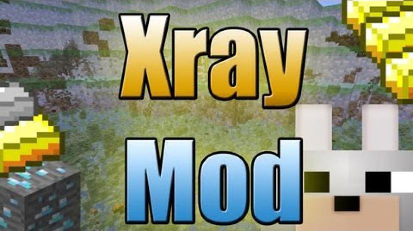 我的世界1.8.8XRay透视MOD截图0