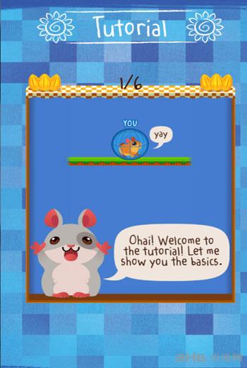 仓鼠球电脑版截图1