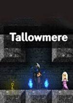 烛火地牢(Tallowmere)破解版v331
