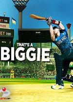 ICC��I板球2015(ICC ProCricket 2015)破解版