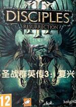圣战群英传3:复兴(Disciples III: Renaissance)破解版