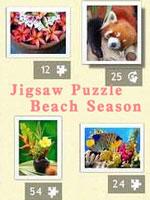 拼图游戏:海滩季节