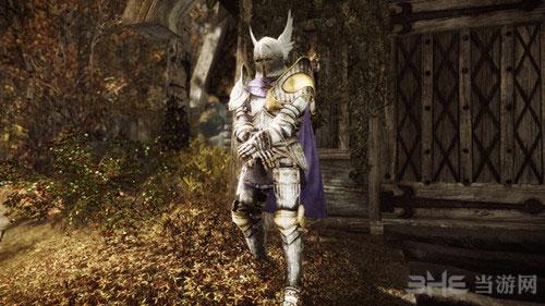 上古卷轴5天际十字军盔甲圣骑士之辉MOD截图1