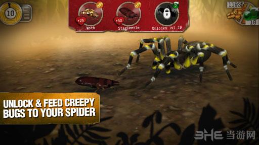真正可怕的蜘蛛电脑版截图2