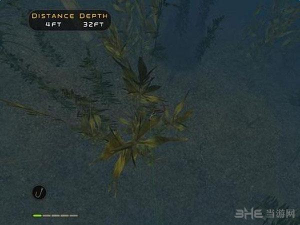 模拟专业钓鱼2009截图2