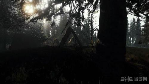 森林截图1