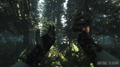 森林截图2
