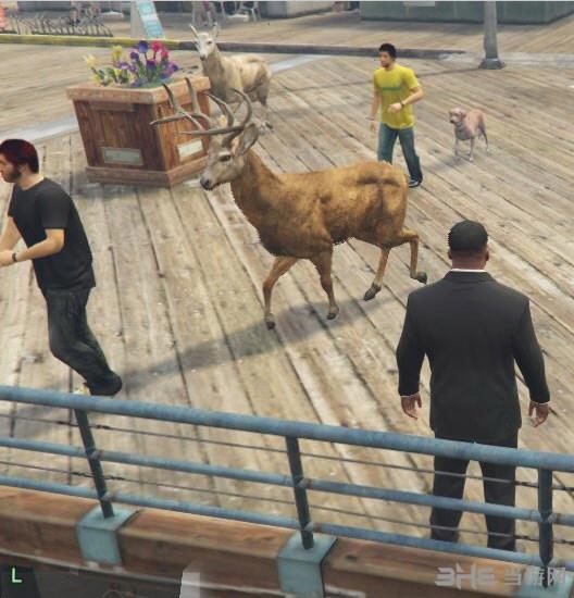 侠盗猎车手5携带宠物的行人MOD截图1