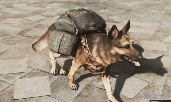辐射4狗用背包MOD截图1