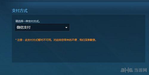 Steam支付页面截图1