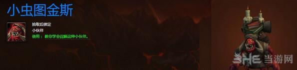 魔兽世界考古专业宠物小虫图金斯截图1
