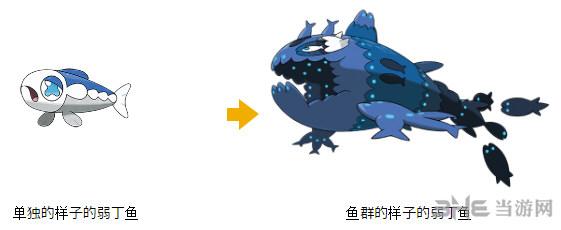 精灵宝可梦太阳月亮弱丁鱼图片3