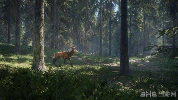 猎人荒野的呼唤截图2