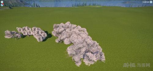 过山车之星樱花树截图2