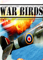 战鸟(War Birds:WW2 Air strike 1942)硬盘版