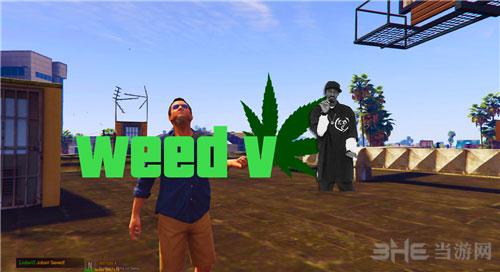侠盗猎车手5随时随地抽大麻MOD截图0