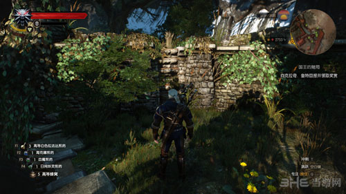 巫师3游戏图片3