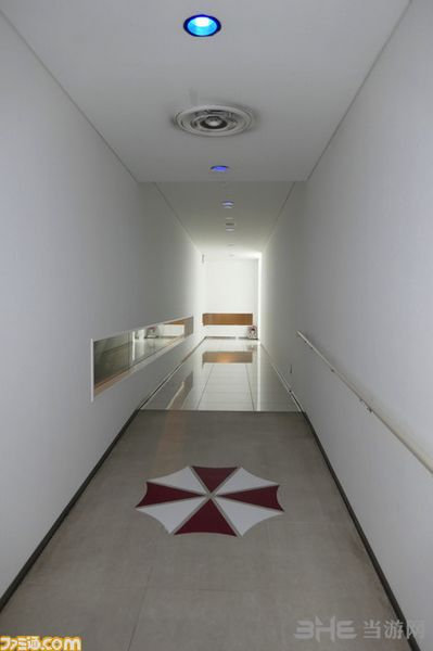 安布雷拉研究所图片4