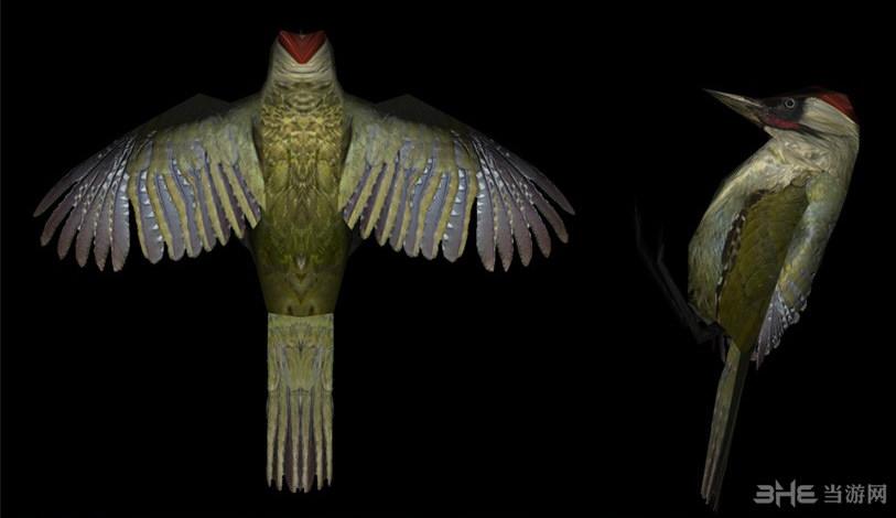 上古卷轴5天际重制版天空之鸟MOD截图1