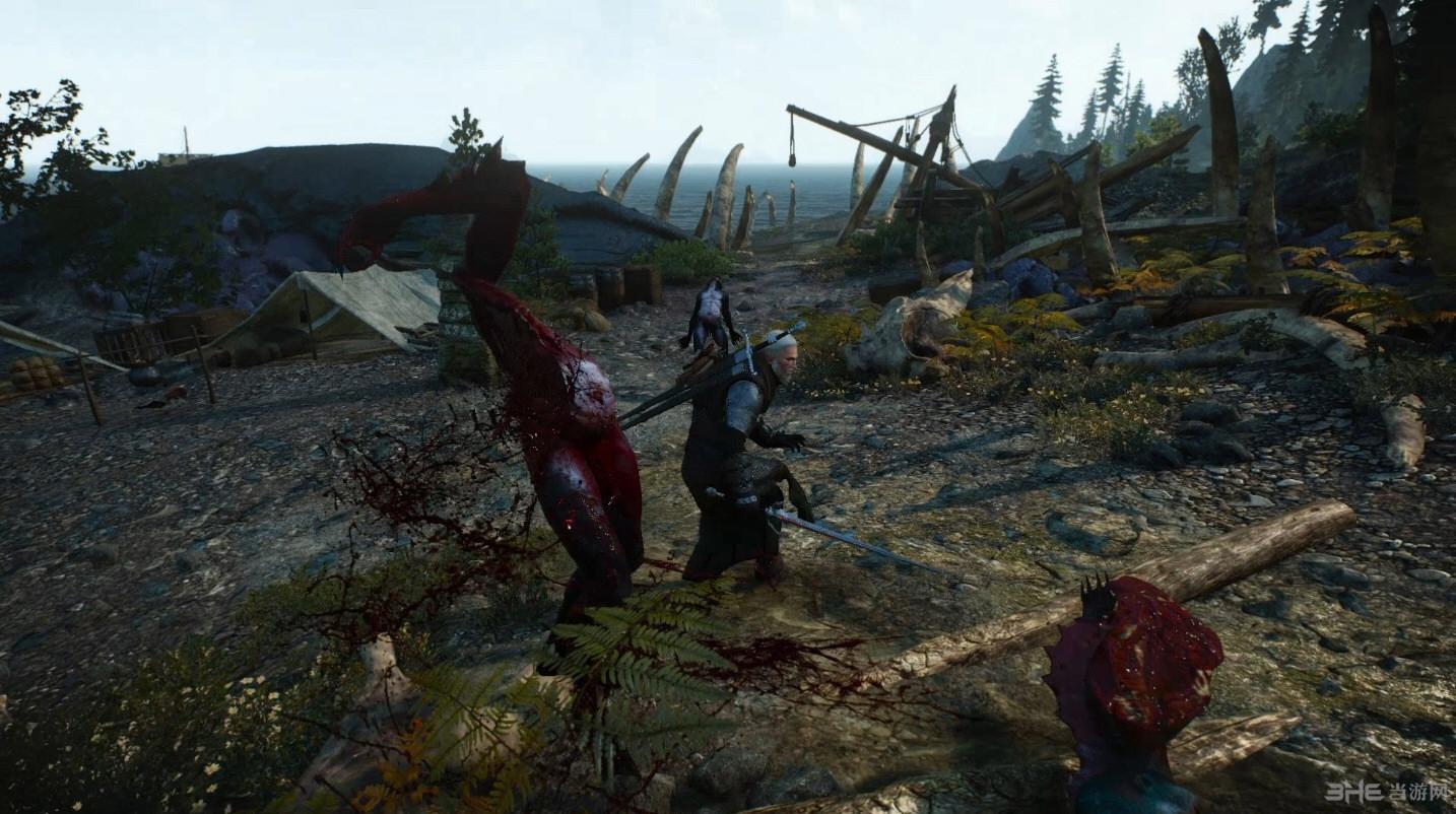 巫师3:狂猎年度版百分百肢解MOD截图1