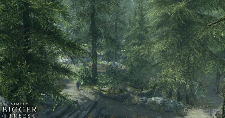 上古卷轴5天际重制版更大的树林MOD截图0