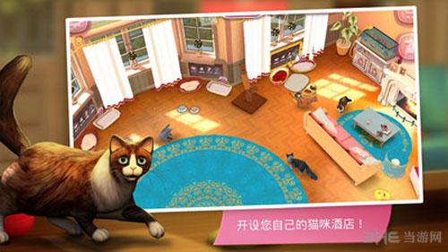 猫舍电脑版截图3