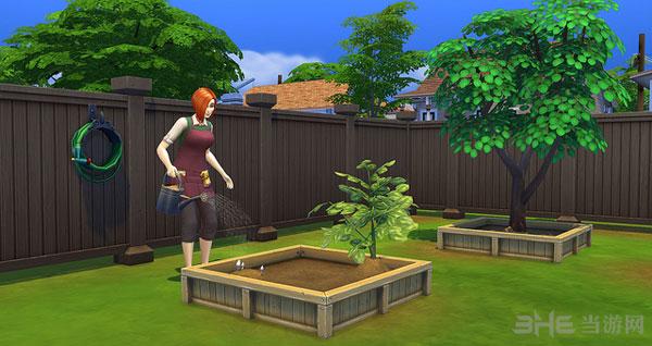模拟人生4园艺技能1