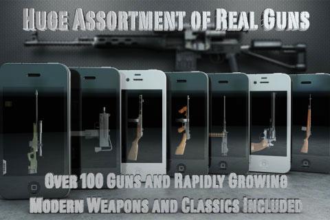 爱枪支电脑版截图2
